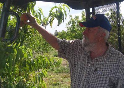 Grandpa grew up farming.