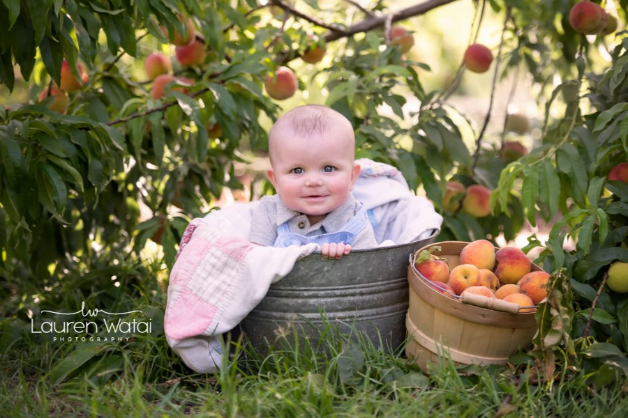 w lw baby orchard