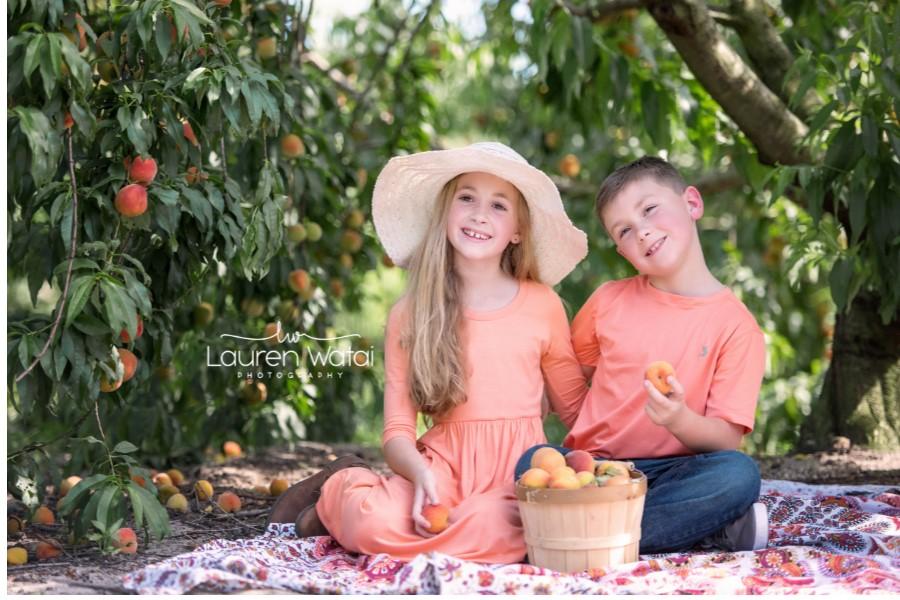 w lw sibling peach